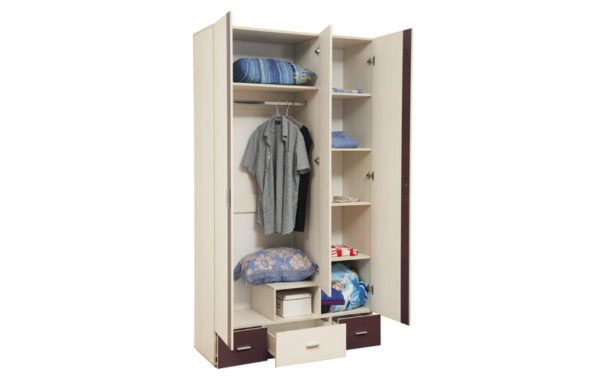 Шкаф для одежды 06.19 «Некст»