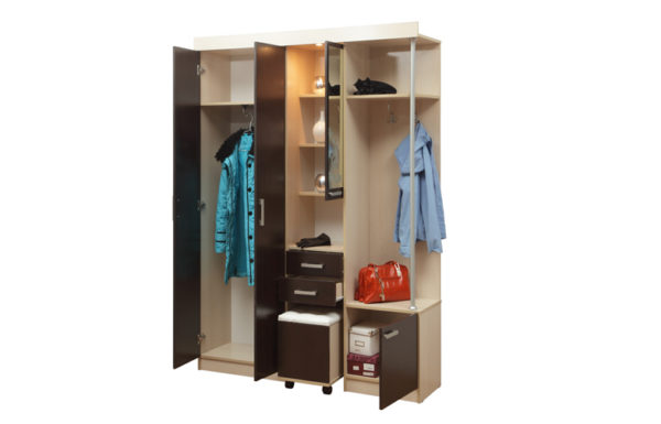 Шкаф комбинированный «Дебют-5»